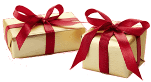 Gift boxes - bird of prey experience gift
