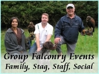 group falconry events-s