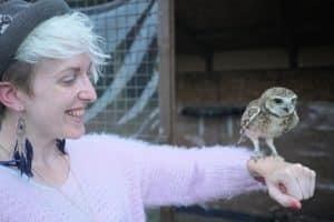 Pod the burrowing owl being friendly with Charlotte on her birds of prey experience days