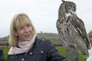 owl dotty hawley med