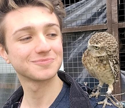 Little Pod the Burrowing Owl