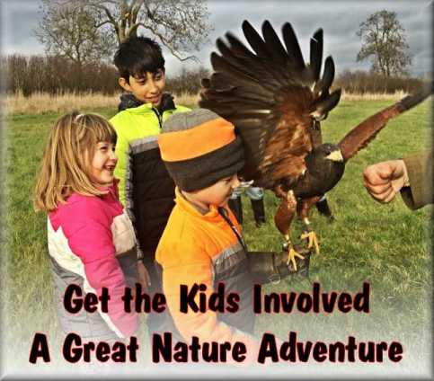 Amazing experience for kids. Nurture with nature.